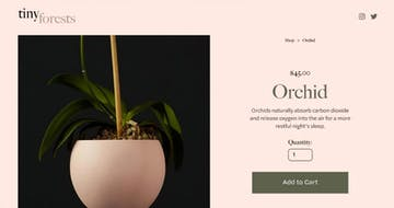 Squarespace Landing Pages: Answers to 10 FAQs