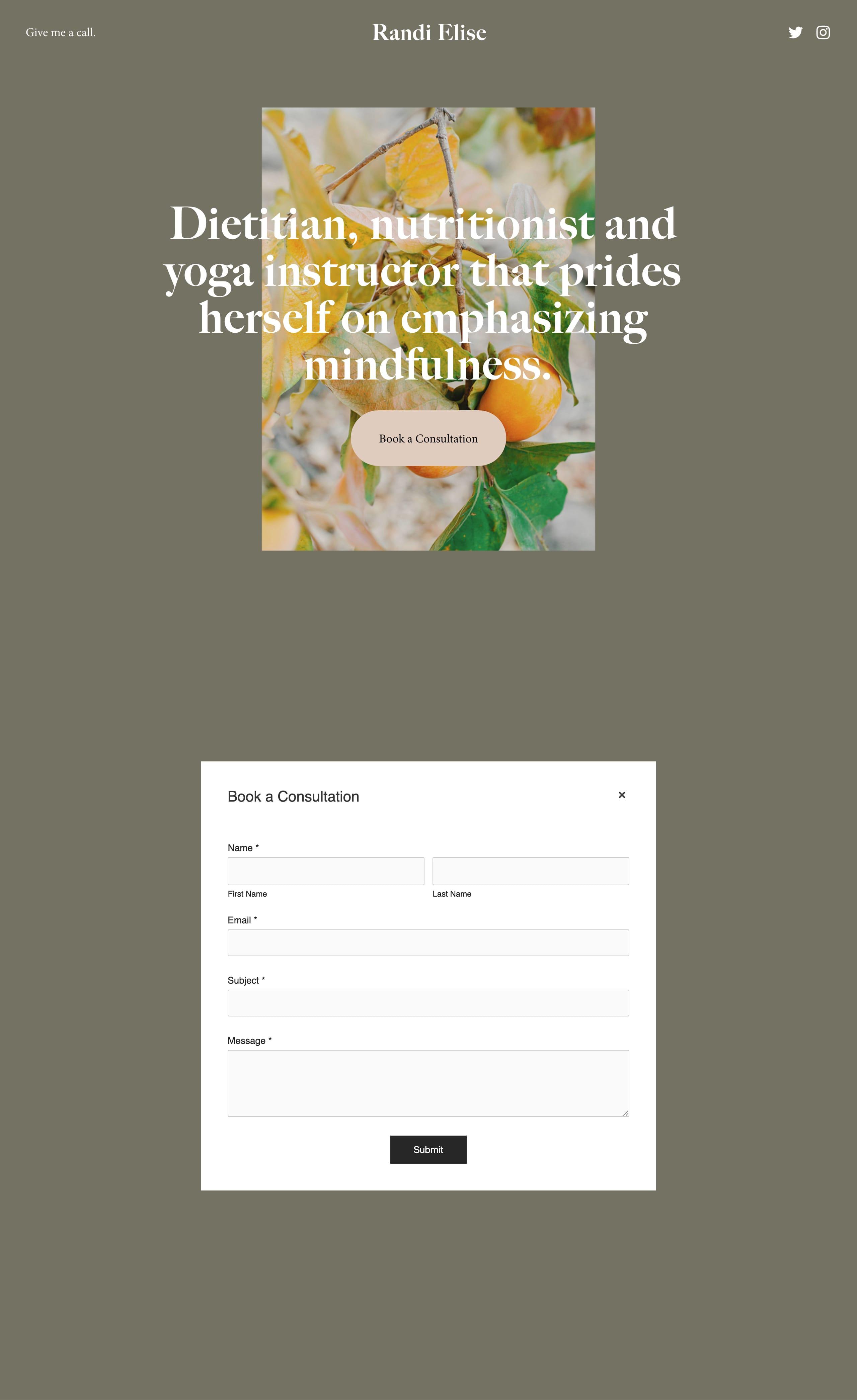 Randi Website Screenshot
