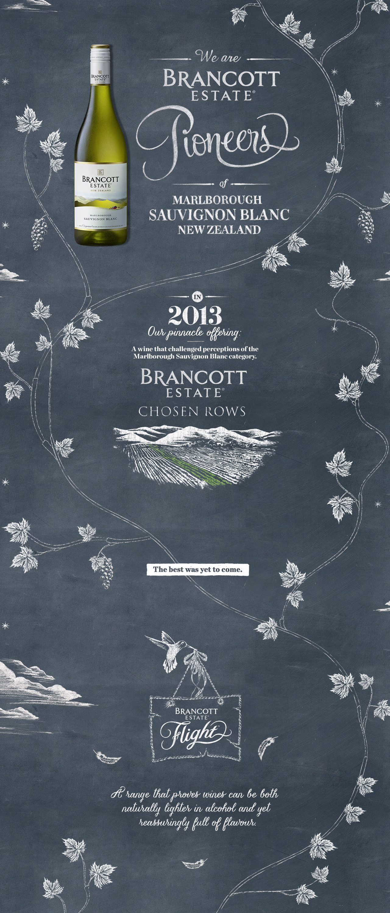 Brancott Estate Pioneers Website Screenshot