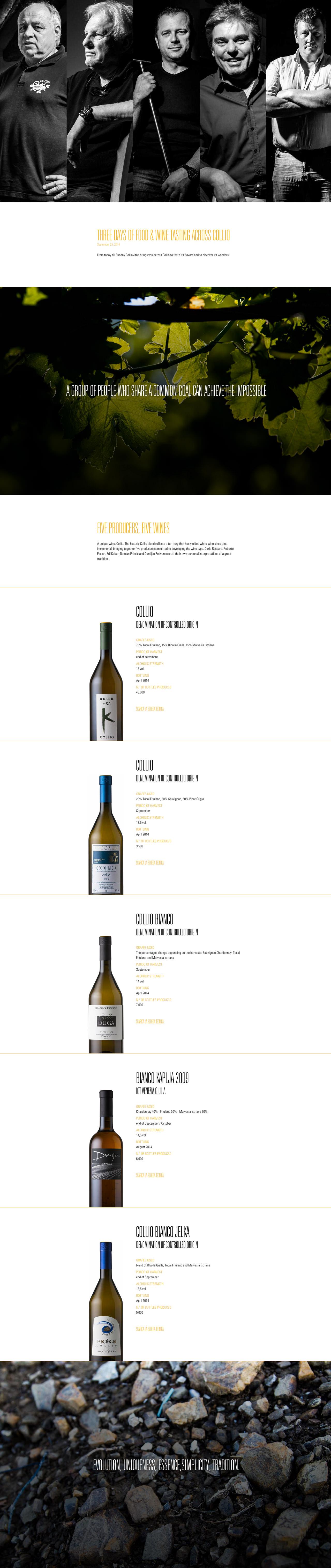 Collio Vitae Website Screenshot