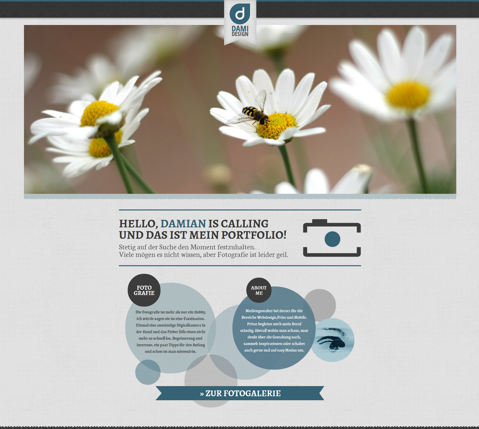 damidesign Website Screenshot