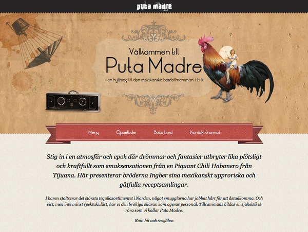Puta Madre Website Screenshot