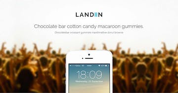 Landiin Thumbnail Preview