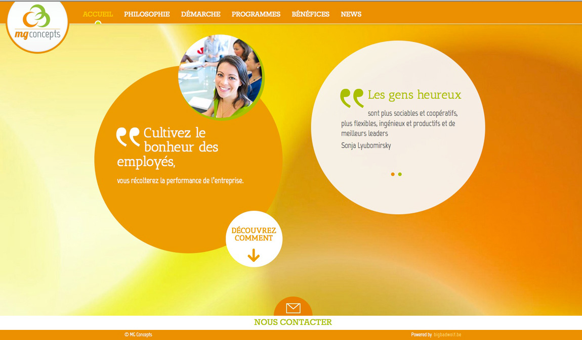 MG concepts Website Screenshot