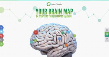 Your Brain Map Thumbnail Preview